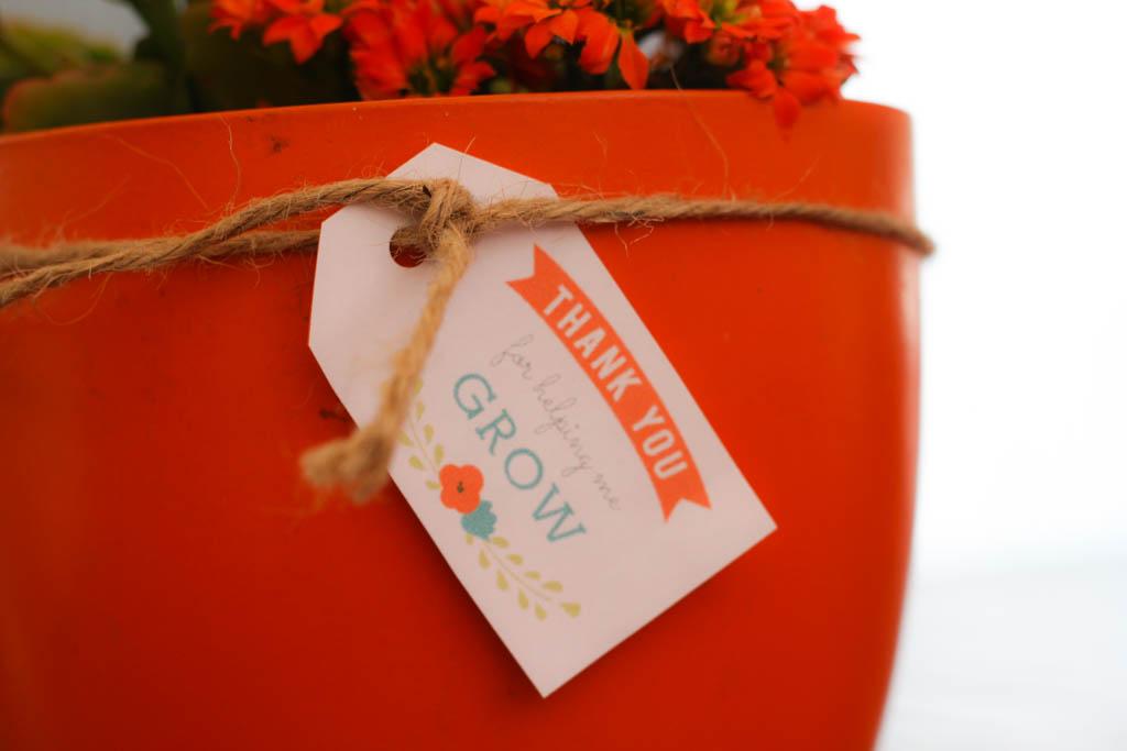 regalos originales para regalar